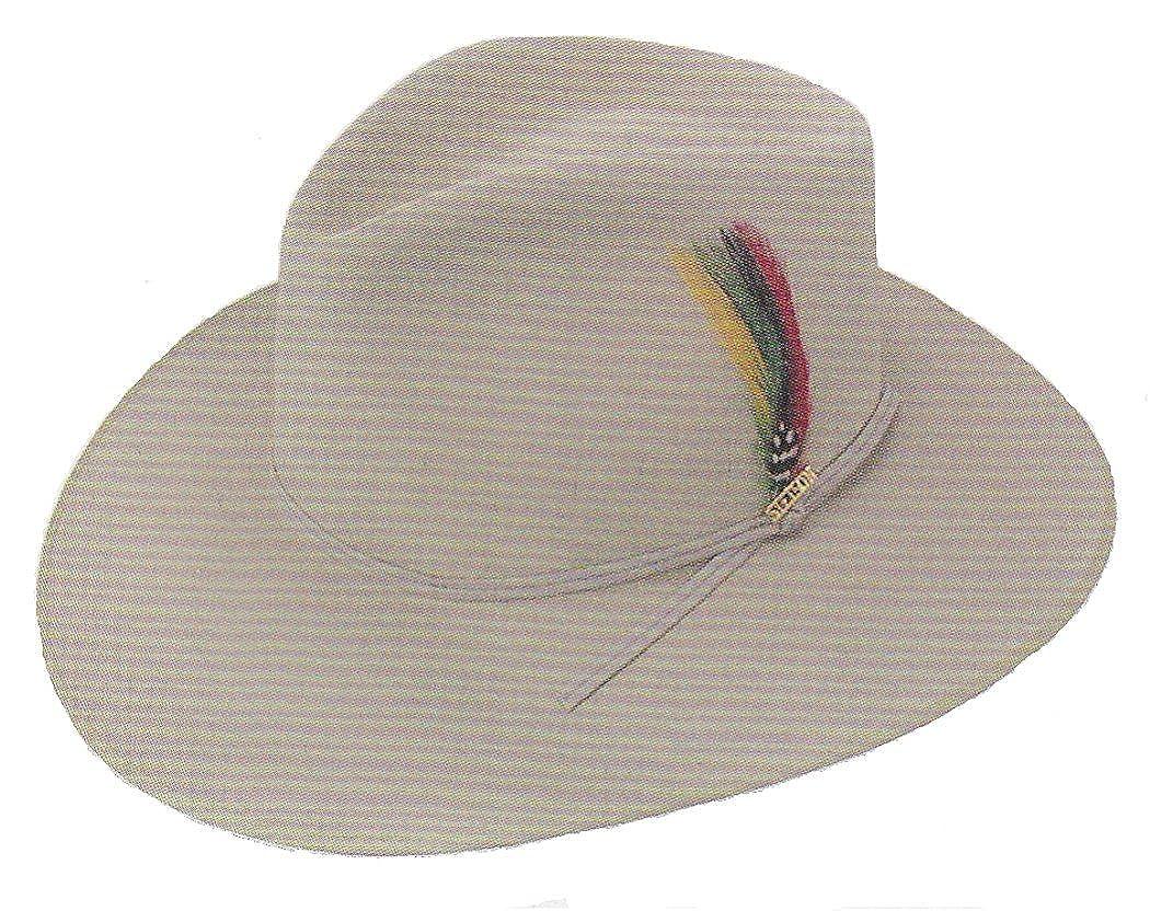 0d6965e9 Stetson SFDUNEB-1639 Dune Hat at Amazon Men's Clothing store: Cowboy ...