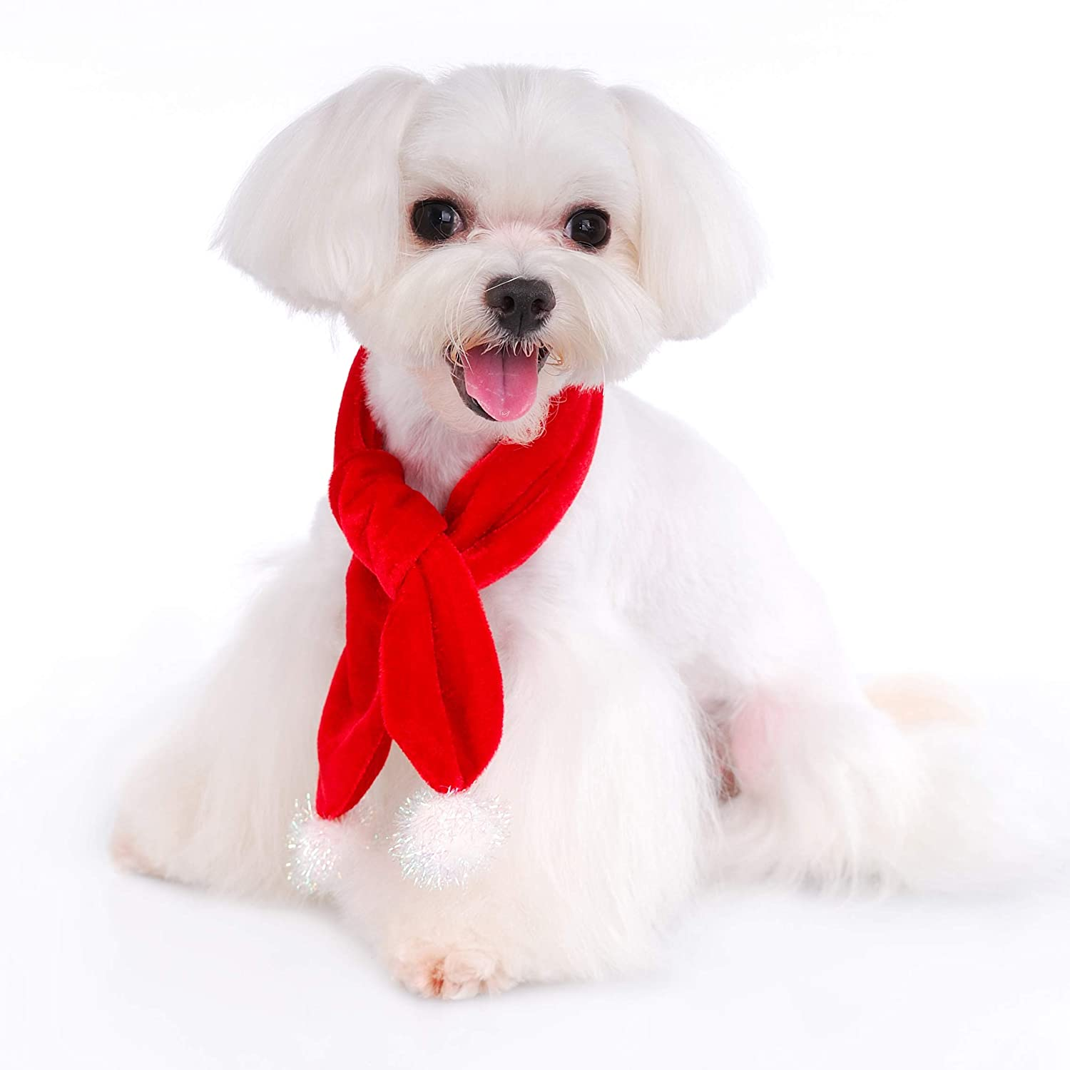 Great for Family Xmas Card Photos Scarf Pooch Outfitters Dog Christmas Outfit Collection Coat Collar Slider Dress Pajamas and Hat Tie Bow Tie