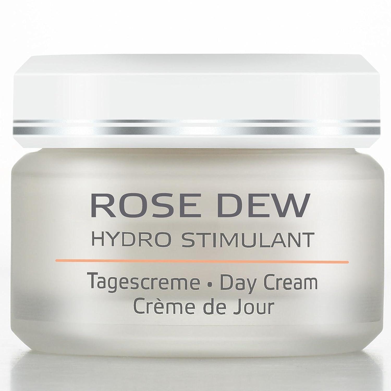 Annemarie Borlind Rose Dew Day Cream, 1.7 Ounce