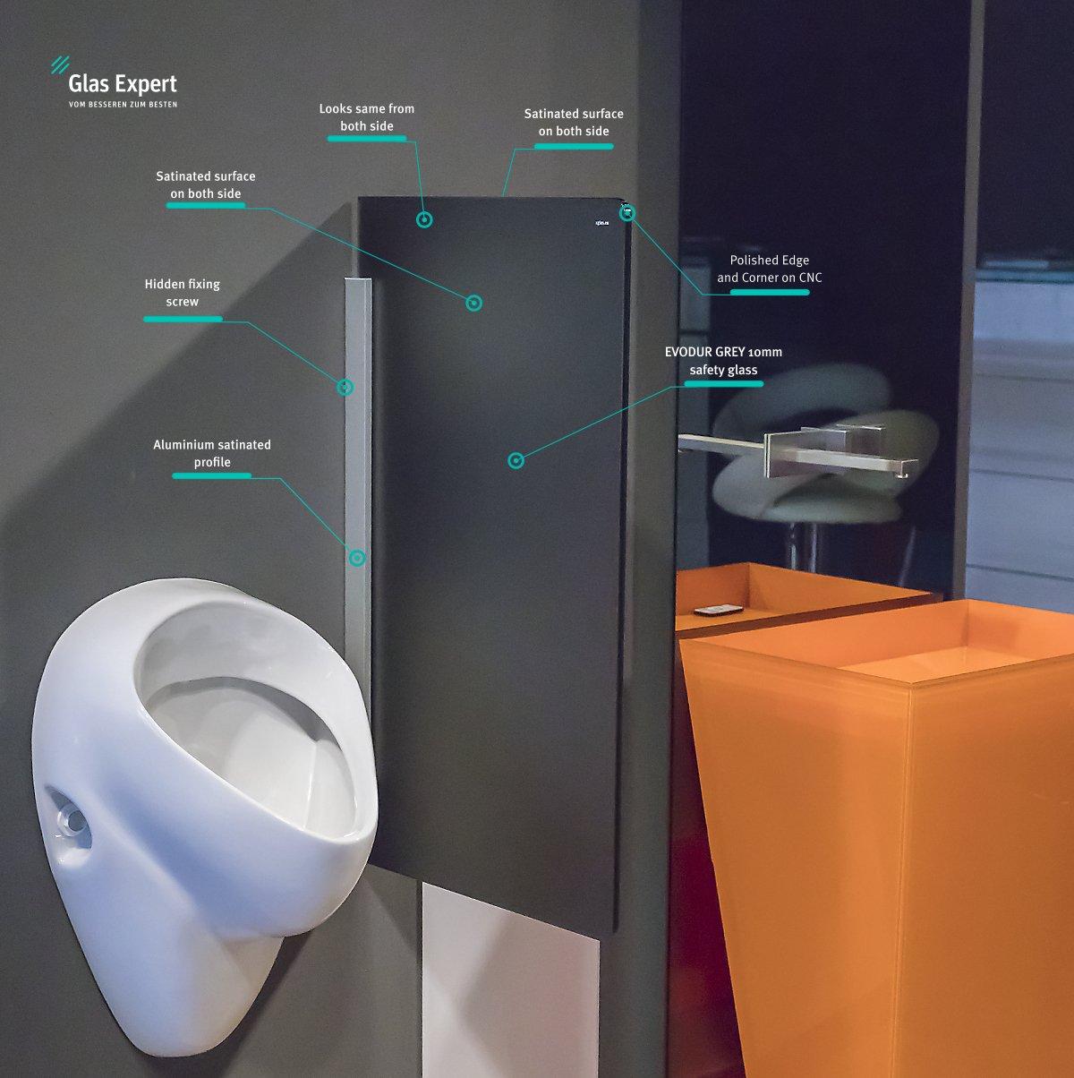 Vidrio Tabique Urinario 450 mm x 800 mm de Vidrio Urinal Urinario Divisor de Vidrio de la Ventana de Pared de Partición WC: Amazon.es: Industria, empresas y ciencia