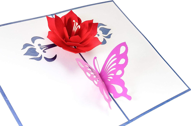 Erfolg Gute Besserung Karte Viel Gl/ück 3D Pop Up Gru/ßkarte PrimePopUp Gesundheit Alles Gute Schmetterling mit Blume Geburtstagskarte f/ür Geldgeschenk oder als Gutschein