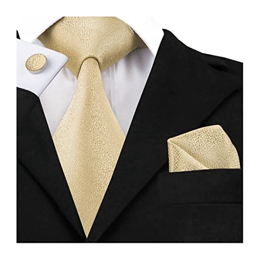 ae04460139fe Amazon.com: Dubulle Silk Ties for Men Champagne Gold Necktie Mens Tie:  Clothing