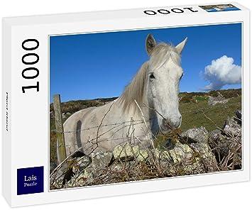 esJuguetes 1000 Caballo Y Juegos Puzzle Lais PiezasAmazon Irlanda sCdthQrx