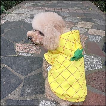 DELIFUR Disfraz de piña con Capucha para Perro, de Delifu ...