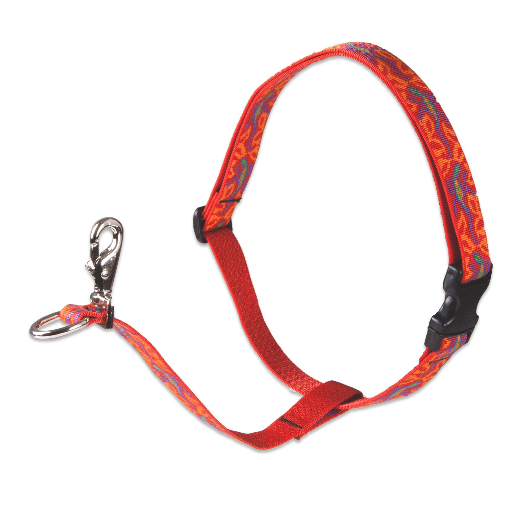 LupinePet Originals 1'' Go Go Gecko 26-38'' No Pull Harness for Medium-Larger Dogs