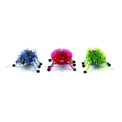 HEXBUG Beetle: Toys & Games