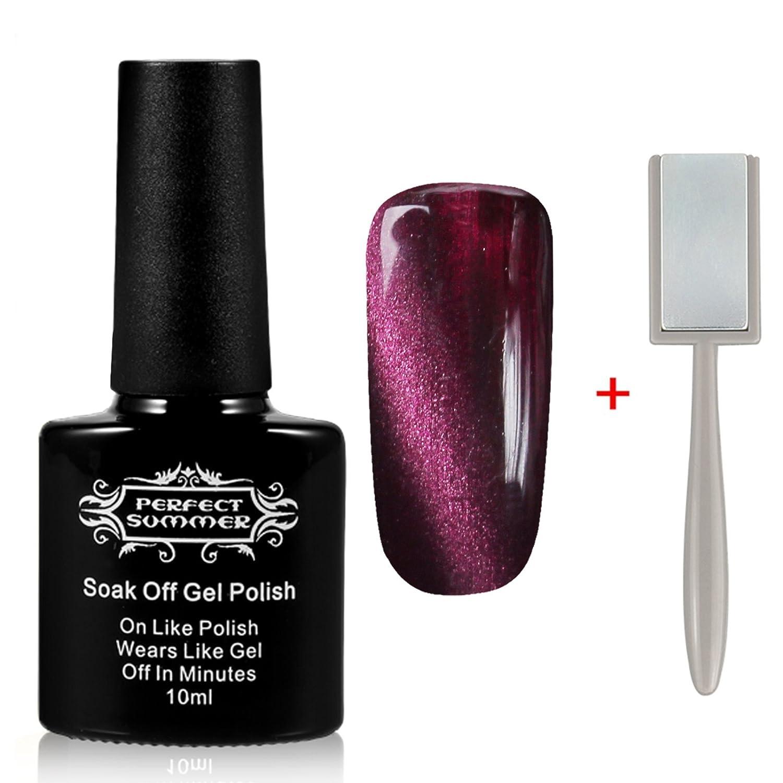 Perfect Summer Gel Nail Polish 10ml Magnetic 3D Cat Eye UV LED Gel ...