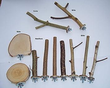 Klettergerüst Für Wellensittiche : Buyandbehappy sitzstangen sitzbretter für vögel wellensittiche
