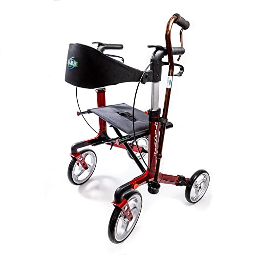 Amazon.com: Walker Atlantis - Andador con ruedas de 10.0 in ...