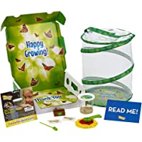 509aeb1b999b Insect Lore Deluxe Butterfly Garden with Live Cup of Caterpillars and  Feeding Habitat Kit