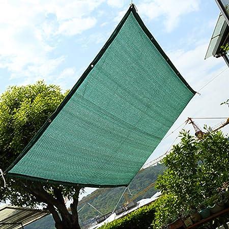 Sombra Solar Malla Patio/Toldo/Cubierta De Ventana, HDPE 75% Malla De Malla para Jardín con Protección Solar, Pérgola O Gazebo Parasol con Arandelas, Verde (Size : 1Mx2M): Amazon.es: Hogar