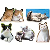 kmag 猫マグネット 5種類セットA