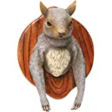 Wall Mounted Squirrel Head - Funny Hunting Plaque Trophy