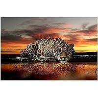 Ecotrump 35x25cm DIY Diamond Leopard Painting Cross Stitch 3D Needlework Crafts Gift