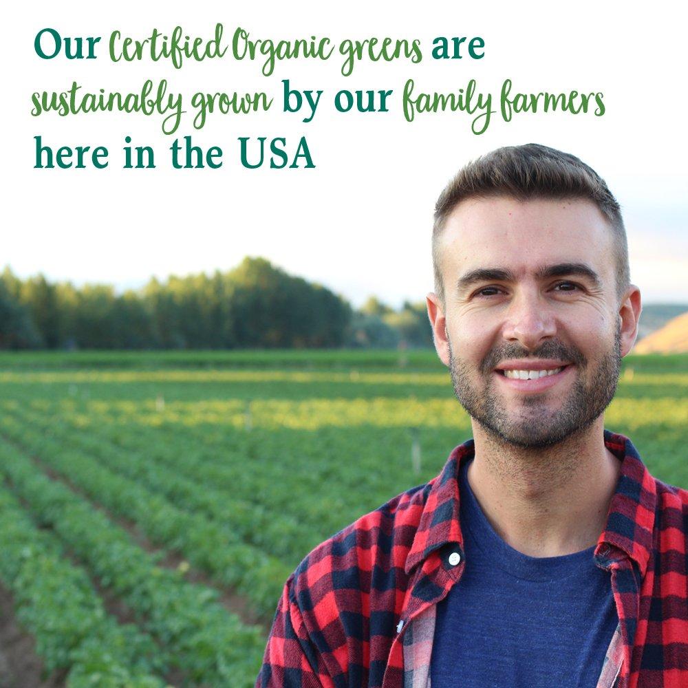 Garden of Life Vegan Green Superfood Powder - Raw Organic Perfect Whole Food Dietary Supplement, Original, 7.4oz (209g) Powder by Garden of Life (Image #6)