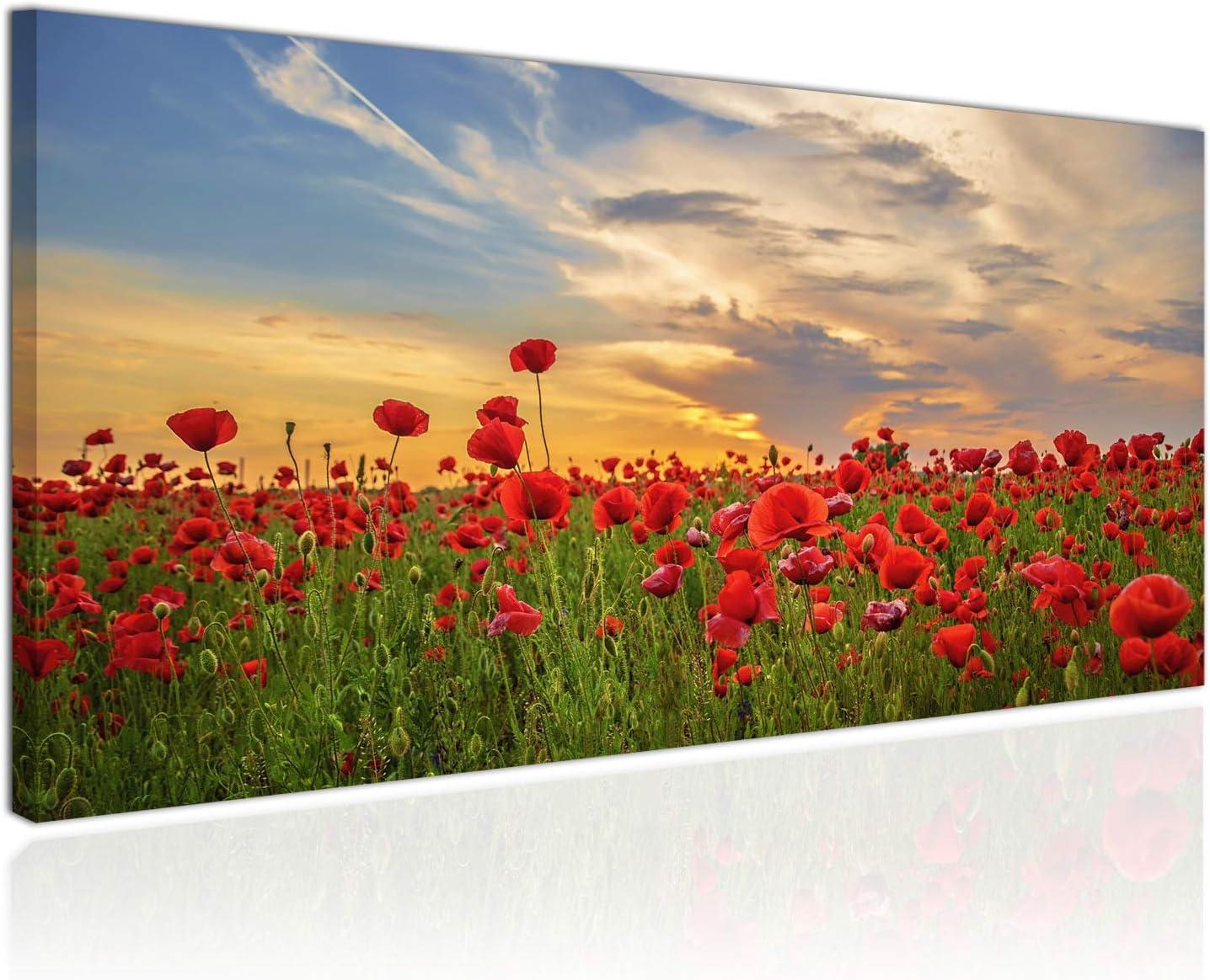 Topquadro Cuadro XXL sobre Lienzo, Imagen Panorámica 100x50cm, Campo de Amapolas, Flores Rojas al Atardecer, Flores Silvestres - Decoración de Pared, Imagen Panorámica - Una Pieza