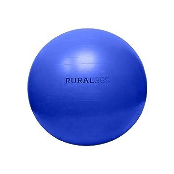 Amazon.com: Rural365 - Pelota de caballo grande en azul ...