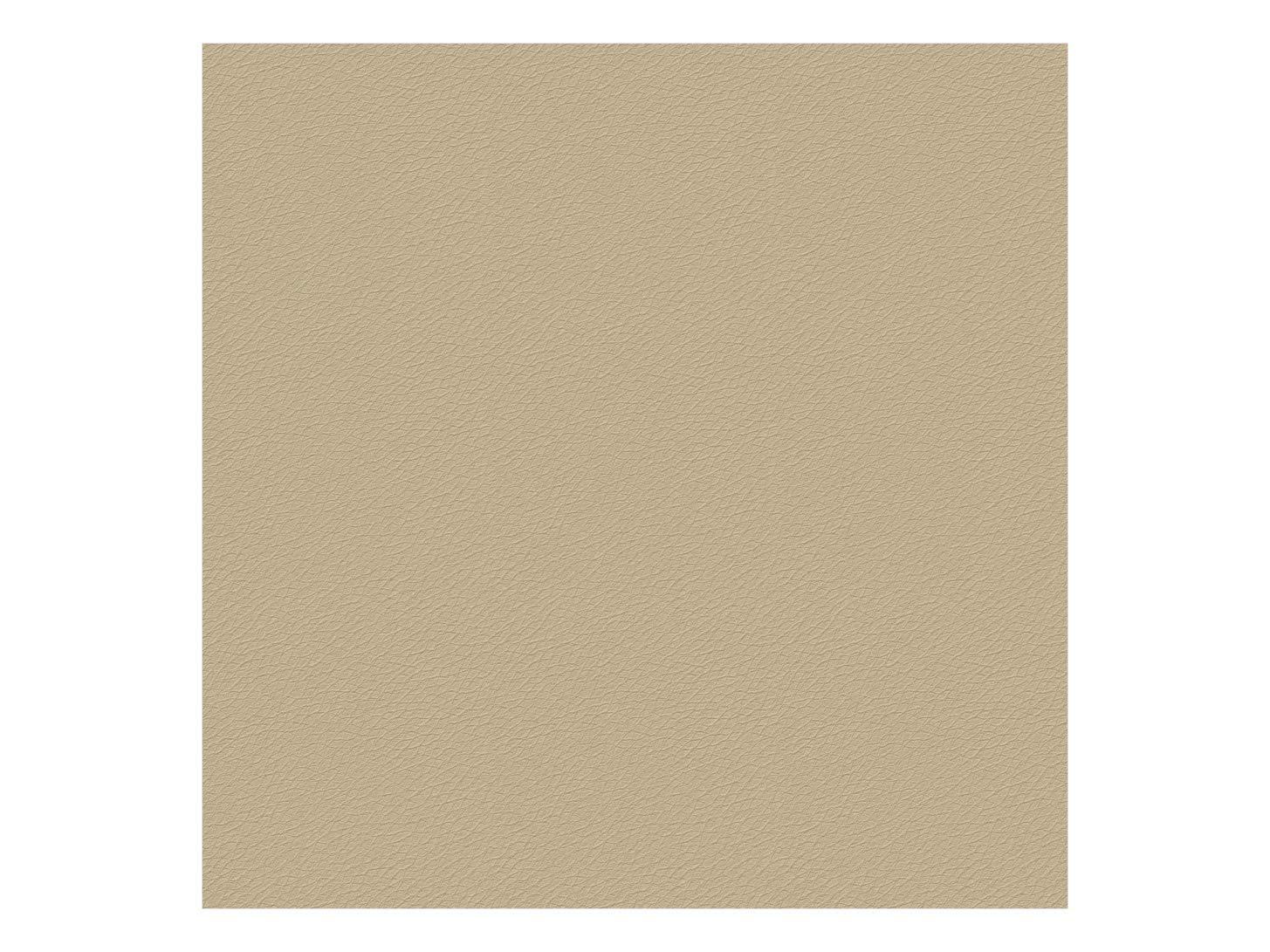 LA WEB DEL COLCHON Polipiel para tapizar 0,5 ML Ancho 70 cms. Color Beige Polipiel