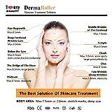0.5mm Derma Roller Skin Massager Micro Needles