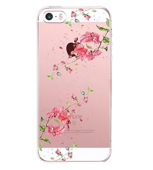 Amazon.com: Qissy iPhone5s Case iPhone5 Case Fun Birdcage ...