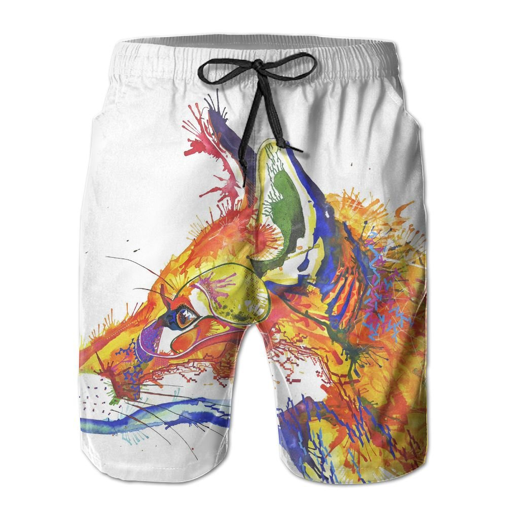 Paintings Of Foxes Mens Beach Shorts Elastic Waist Pockets Lightweight Swimming Board Short Quick Dry Short Trunks