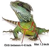 Reptile Harness Adjustable Bearded Dragon Harness