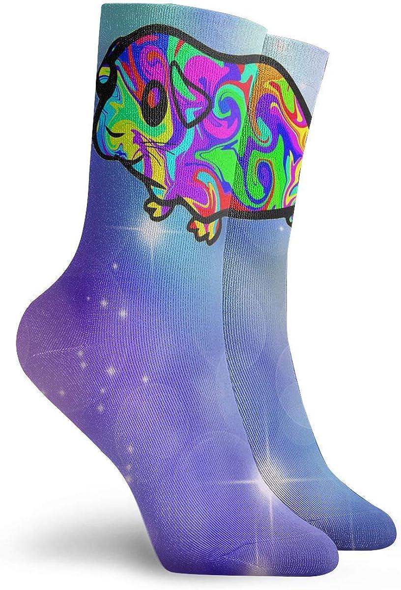 Colorful Guinea Pig Unisex Sport Socks 30cm Long Sock