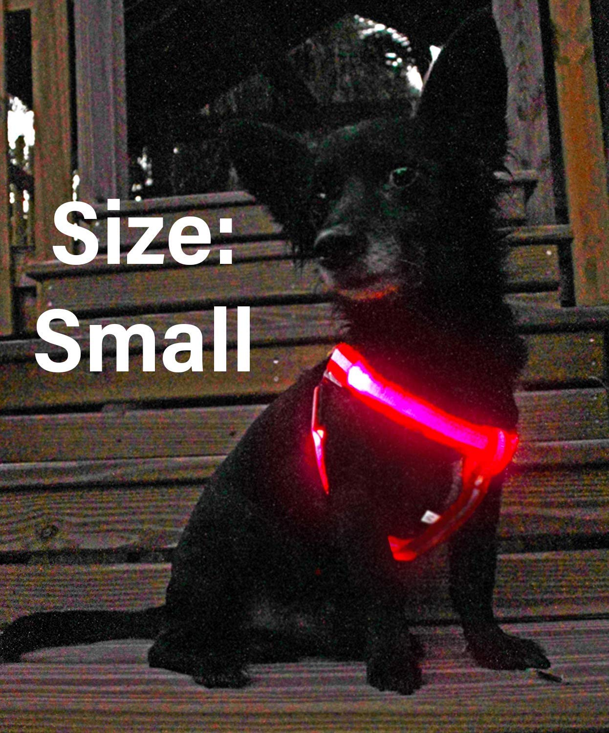 LED Dog Harness No-Pull, USB Rechargeable Outdoor Lightweight Reflective  Pet Vest Harness Adjustable Belt Suit Small, Medium, Large Dogs - Red