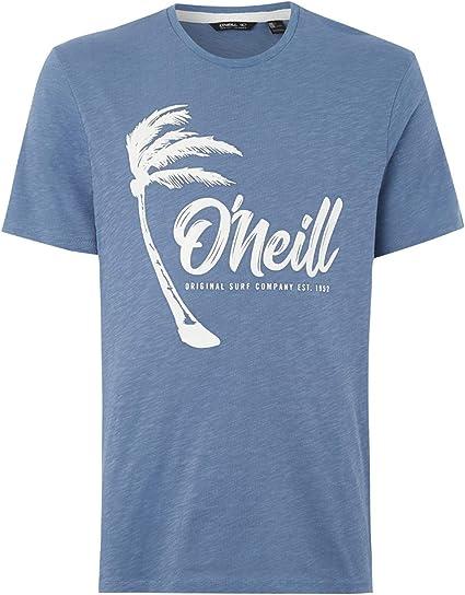 ONEILL Camiseta Hombre ~ Palm Graphic Azul: Amazon.es: Ropa y accesorios