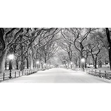 Culturenik New York City (NYC) Central Park Mall in Snow Decorative Photography Print (Unframed 12x24 Poster)