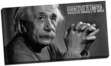 Amazon Panther Print Albert Einstein Imagination Quotes Canvas