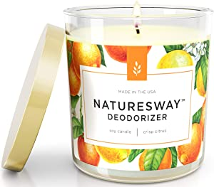 Crisp Citrus Odor Eliminating Scented Candles for Home | Non Toxic Long Lasting Soy Candles | Attractive Design | 12.5 oz Jar | Hand Made in The USA