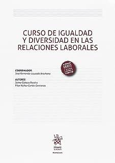 Curso de Igualdad y Diversidad en las Relaciones Laborales (Manuales de Derecho del Trabajo y