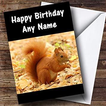 Red Squirrel Personalised Birthday Card Amazon Office Products
