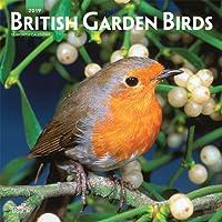 British Garden Birds 2019 Calendar
