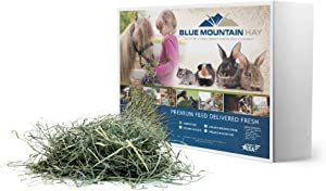 Blue Mountain Timothy Hay (10LB) for Guinea Pigs, Rabbits, Pigs, Natural Food for Bunny Rabbit, Hamster, Chinchilla Gerbil Guinea Pig Hay Rabbit Hay. Similar to Alfalfa Pellets Cubes Orchard Grass Hay