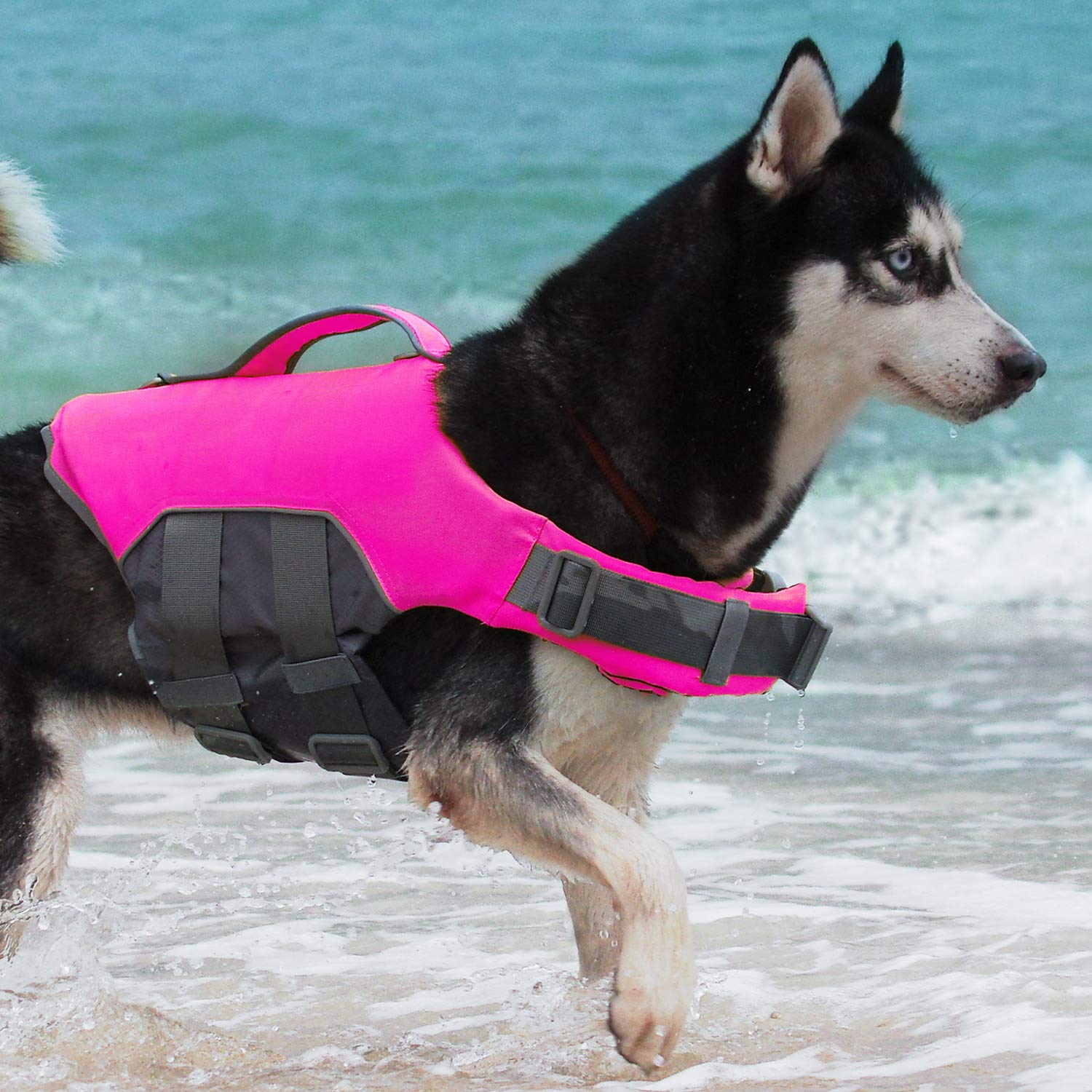 ThinkPet Dog Life Jacket, Reflective Lifesaver with Rescue Handle, Adjustable Floating Vest,High Buoyancy Aid Dog Saver X-Large Pink by ThinkPet