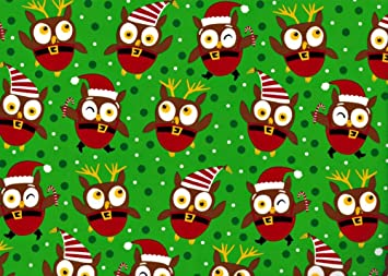 amazoncom christmas owl jumbo roll gift wrap paper christmas hoot home kitchen