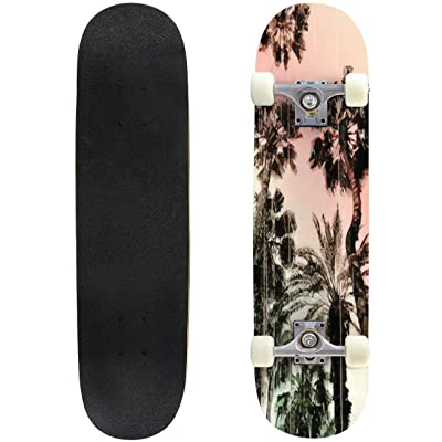 Classic Concave Skateboard Palm Tree Print in Vector Longboard Maple Deck Extreme Sports and Outdoors Double Kick Trick for Beginners and Professionals : Sports & Outdoors