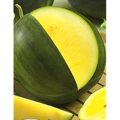 Watermelon Yanusyk - 30 Seeds - Organically Grown - NON-GMO : Garden & Outdoor