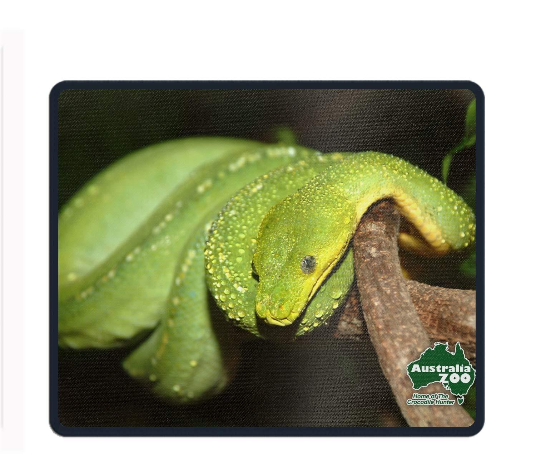Amazon com : Animal Python Snakes Gaming Mouse Pad, Mouse