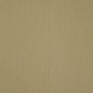 ورق حائط من سكيبتون وول - WE4217