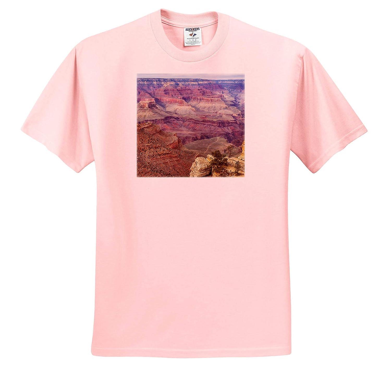 Grand Canyon National Park Arizona ts/_314559 Adult T-Shirt XL 3dRose Danita Delimont Arizona South Rim
