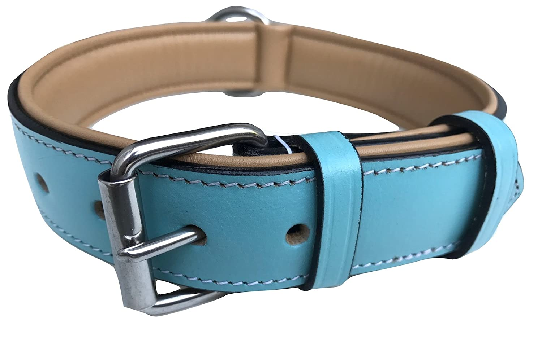 Turquoise Beige Padding Large Turquoise Beige Padding Large Soft Touch Collars, Leather Padded Dog Collar Turquoise and Beige, Size Large with Comfort Padding,