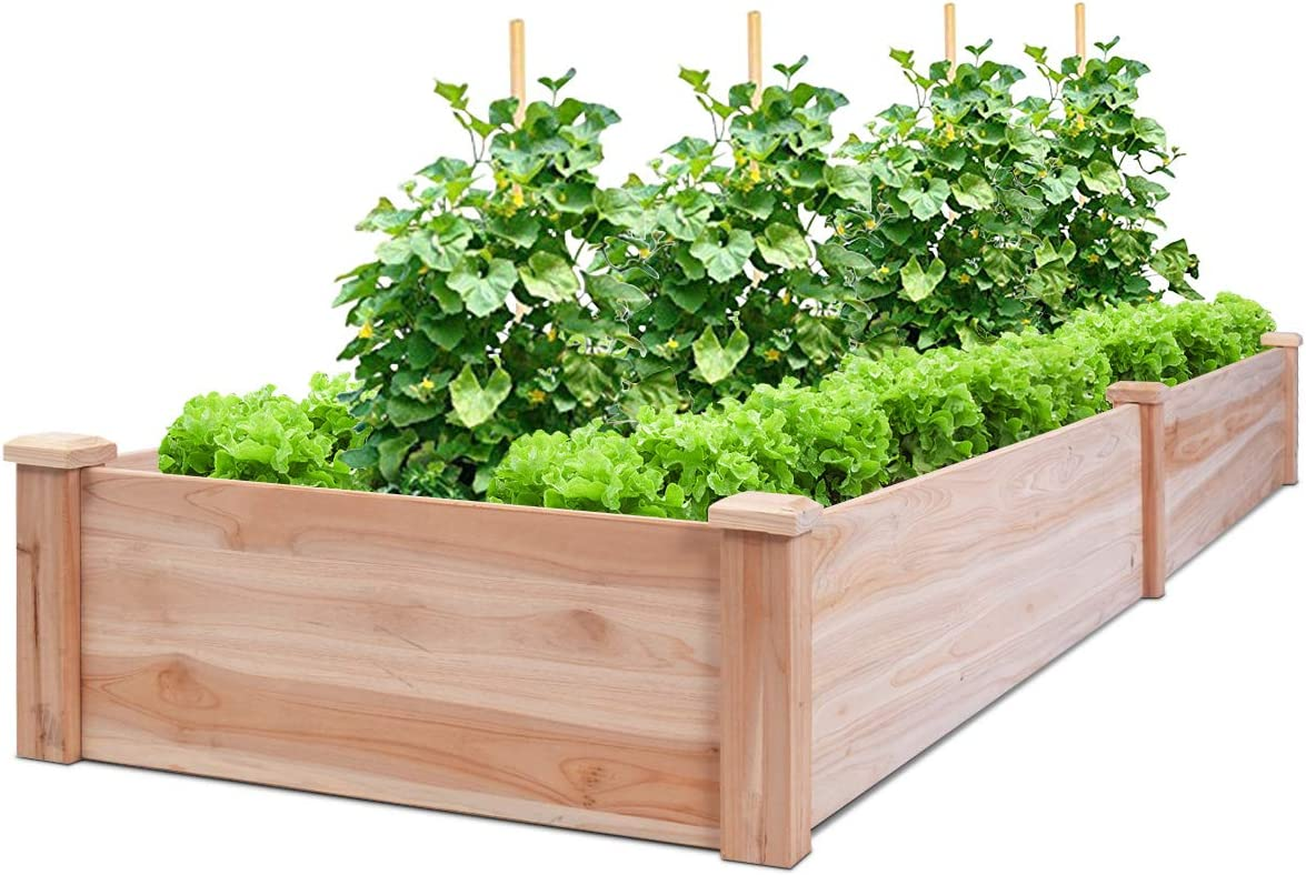 Amazon Com Giantex Raised Garden Bed Planter Wooden Elevated