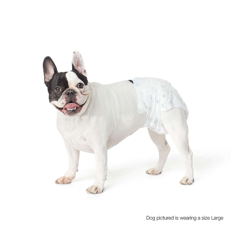 AmazonBasics Pañal desechable para perro Pequeño pack de