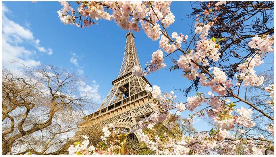 mmzki Cartel de Moda Ciudad romántica París Torre Eiffel Paisaje Pintura al óleo Abstracta sobre Lienzo Impresión de póster Imagen de Pared Arte para Sala de Estar Cuadros No Frame
