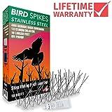 Aspectek UV Proof Stainless STEEL Bird Spikes Kit, 10 Feet with 250ml Transparent Silicone Glue