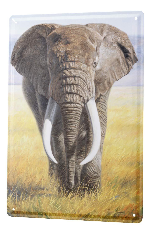 Cartel Letrero de Chapa XXL África Elefante Toro del ...