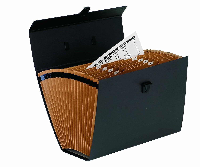FSC Blu con 19 Tasche Bankers Box 9352201 Handifile Organizer Espandibile